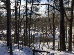 scantic-river-state-park-horizontal-12-21-16
