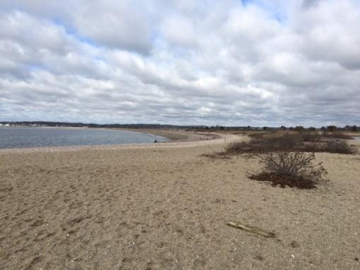 bluff-point-beach