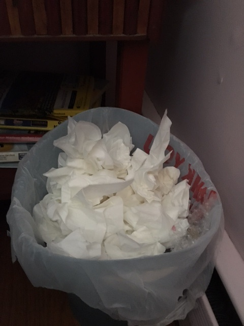waste-basket-of-tissues