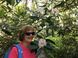 Pachaug Cherry with Rhodie 07.10.17