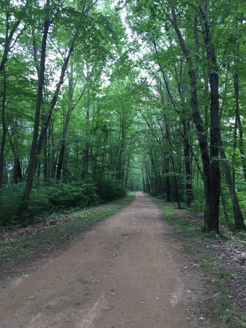 Vernon trail view