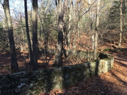 Manchester Case Mt Highland Park stone wall11.15.17