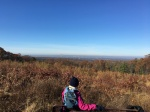 Manchester Case Mt overlook11.15.17